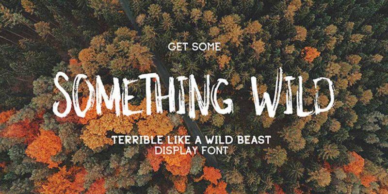 Font Something Wild