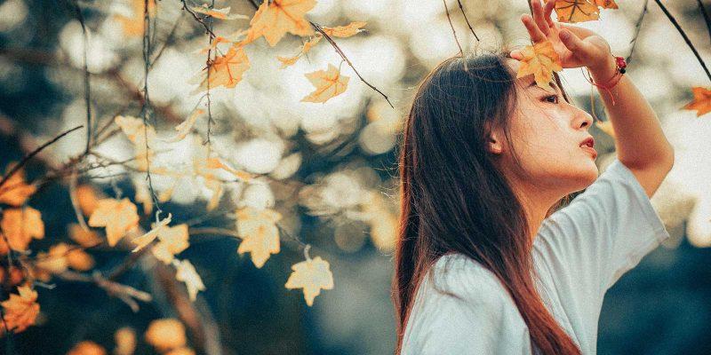 Preset Autumn