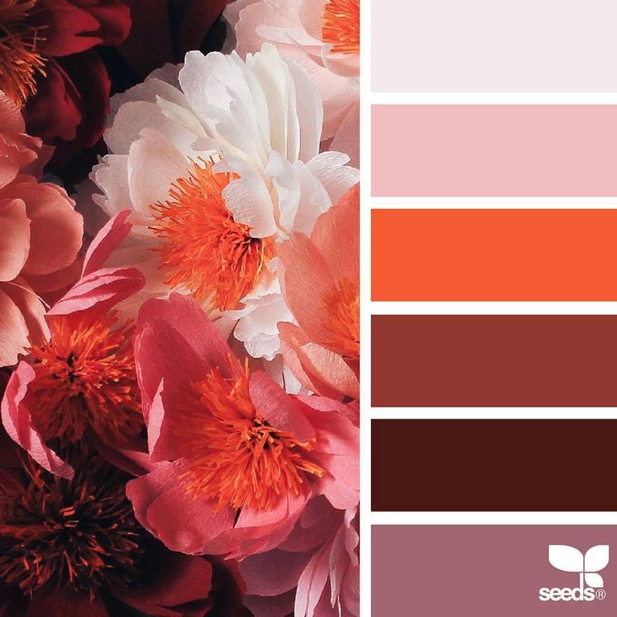Color Palette Red