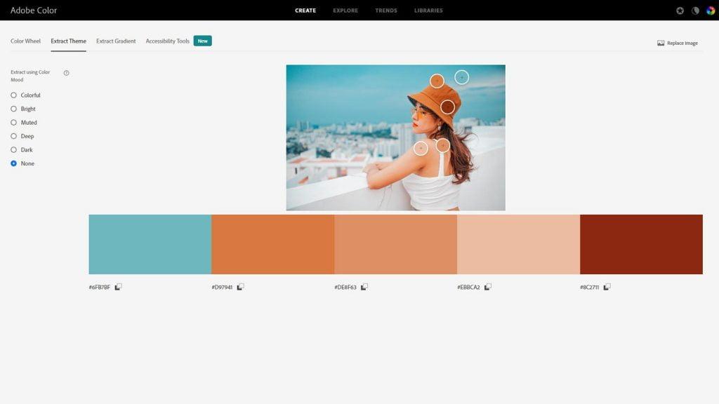 Share Color Palette